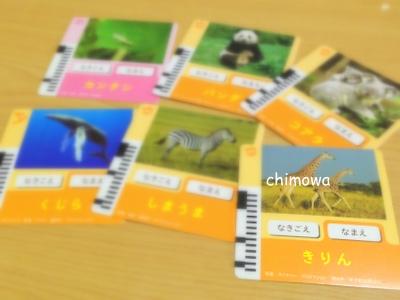 なきごえナビ 動物カードの写真(画像)